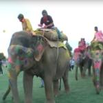 Серия 7 Индия — Матура