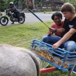 Серия 18 Индонезия — Бали