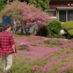 Серия 5 Япония — Семья в «аренду», похороны при жизни и сад травяной сакуры