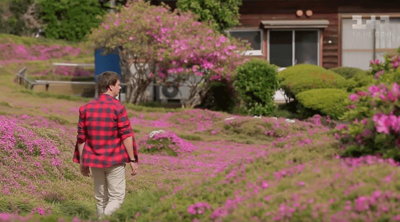 """Семья в """"аренду"""", похороны при жизни и сад травяной сакуры"""