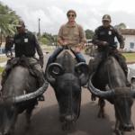 Серия 32 Бразилия — Как управлять буйволом и гастрономический кошмар Маражо