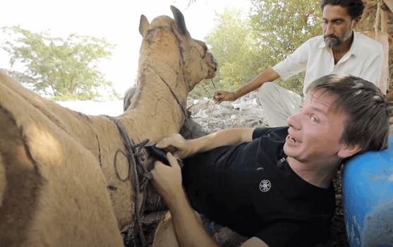 Серия 9 Пакистан — Прогулки на верблюдах и бои кобры с мангустом