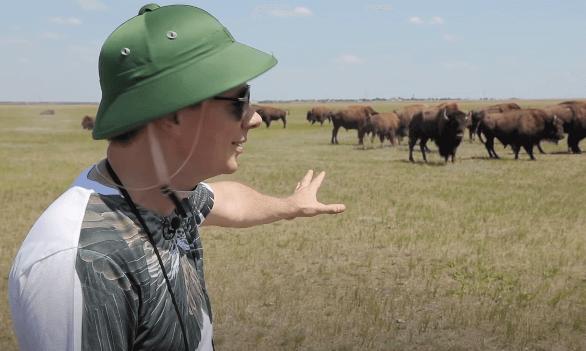 Путешествуй по Украине 2 серия — Животные в Аскания Нова и украинская Сахара